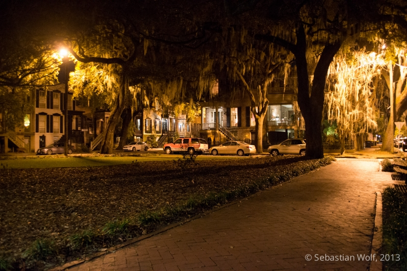Savannah Park bei Nacht