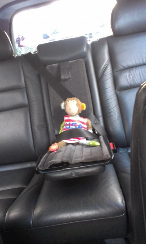 Monkey im Volvo
